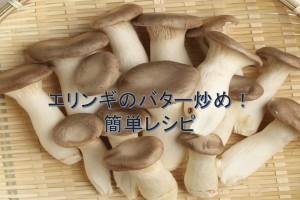 エリンギのバター炒め。エリンギの食感とバターの風味がマッチした簡単キノコ料理レシピ。